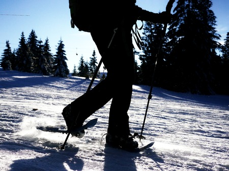 brisk: walking on the snow in the mountains Stock Photo