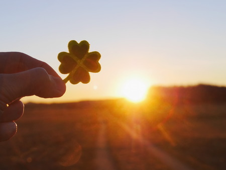 four leaf clover: Green clover leaf with green hearts