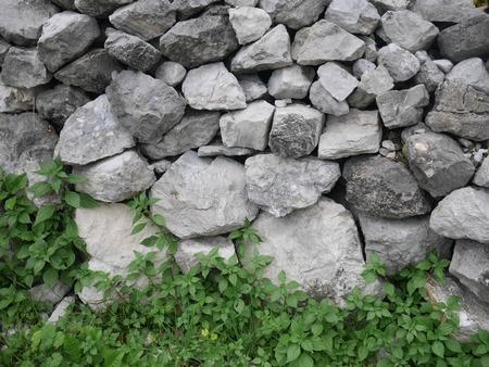 farmstead: Old Ruined Farmstead and Stone Walls