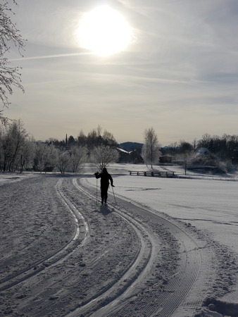 crosscountry: Cross-country skiing outside winter sunny