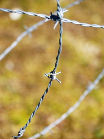 metal wire: the metal wire on green background