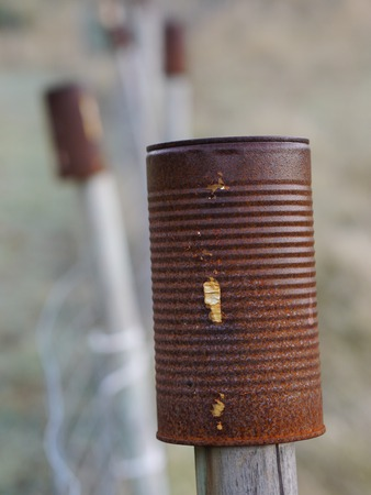 pales: rusty cans over pales of a fence Stock Photo