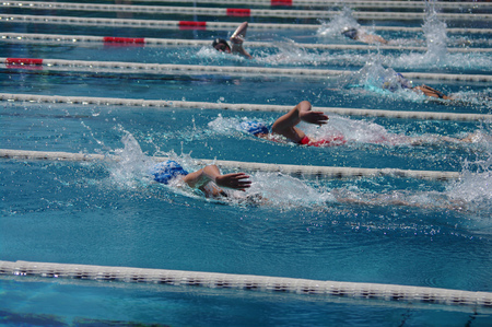 backstroke: Freestyle swimmer in the outdoor swimming pool