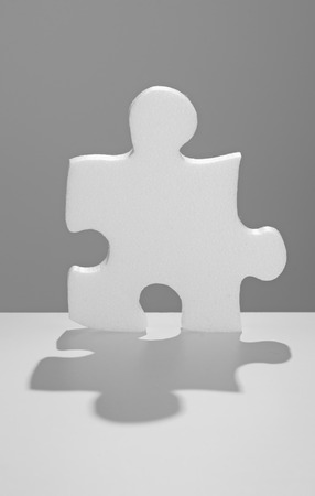 solution: solution symbolized by a jigsaw piece