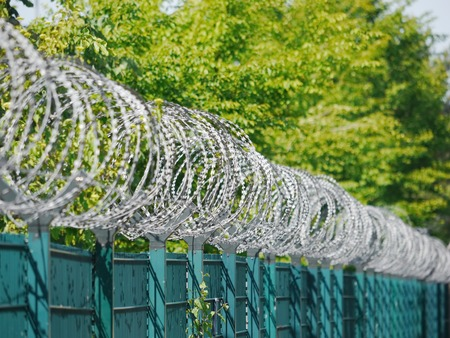razor wire: Barbed tape or razor wire is a mesh of metal strips with sharp edges