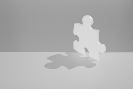 complete solution: solution symbolized by a jigsaw piece