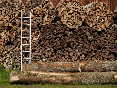 pile of logs: Pile of wood logs ready Stock Photo
