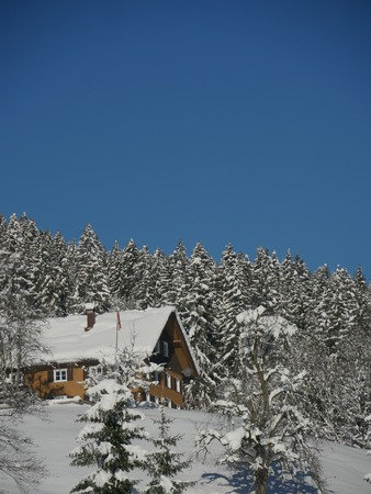 ski lodge: mountain hut in winter with snowflakes at christmas