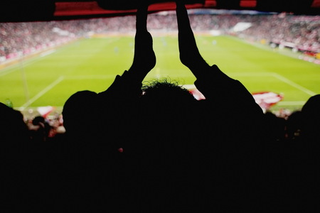 cheering fans: fans cheering at a soccer game