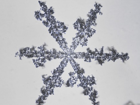 low temperature: photo real snowflakes during a snowfall, under natural conditions at low temperature Stock Photo