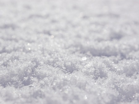 christmas grounds: Real snow surface cover for background texture usage Stock Photo