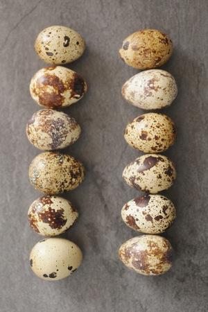 huevos de codorniz: Huevos de codorniz sobre un fondo negro