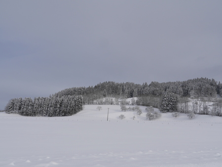 Peaceful Winter Landscape with snow