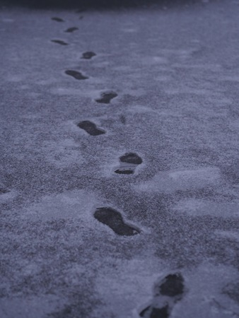 footsteps: Close-up of human footsteps on snowed ground Stock Photo