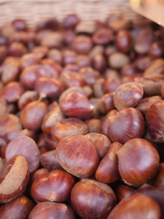 a lot of delicious chestnuts