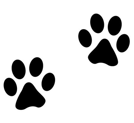 dog paw: Vector illustration of animals footprints on white background