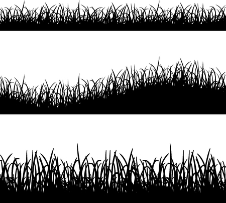 grass: Illustration of grass silhouette on white background