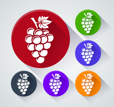 Illustration of grapes circle icons with shadow