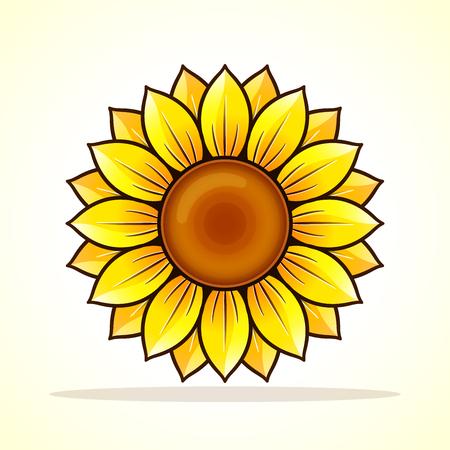 Vector illustration of sunflower on white background