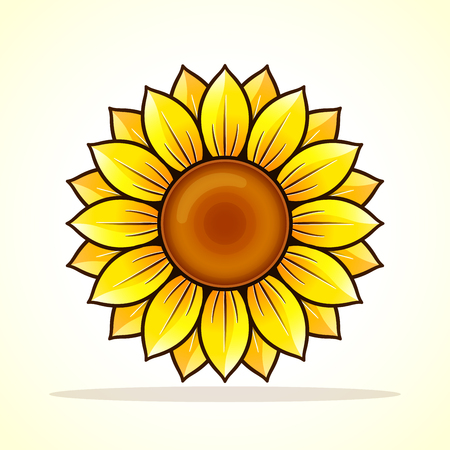 Vector illustration of sunflower on white background