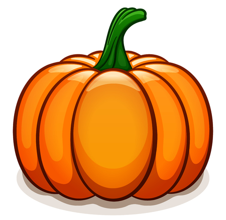 Vector illustration of pumpkin on white background Vettoriali