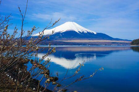 Mt. Fuji over cat yanagi from lake yamanaka (upside-down Fuji)