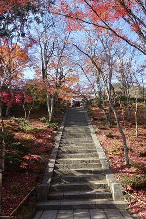 Jojakkoji Temple, Kyoto,  with autumn leaves (stone steps from Niomon gate to the main hall) Editorial