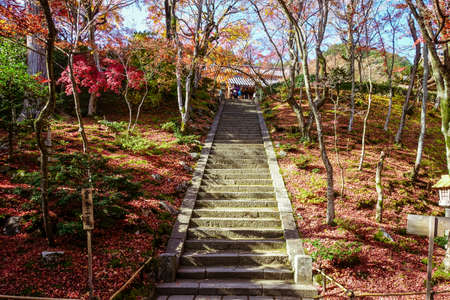 Jojakkoji Temple, Kyoto,  with autumn leaves (Niomon Gate) (stone steps from Niomon gate to the main hall)