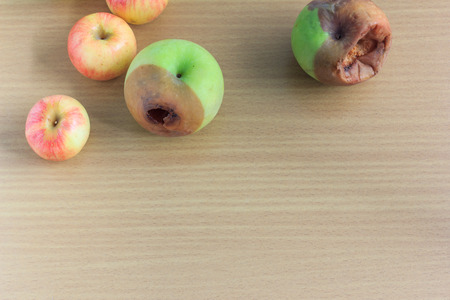 degradable: rotten green apple and fresh pink apple