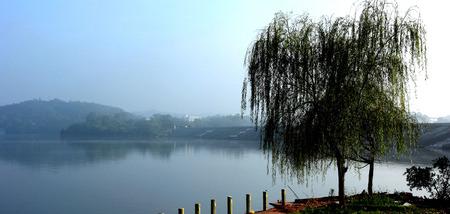 lakefront: lakeside view