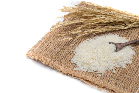 Rice of thailand