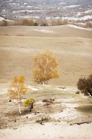 inner mongolia:  Inner Mongolia grassland Stock Photo