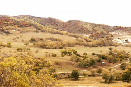 mongolia: Inner Mongolia grassland