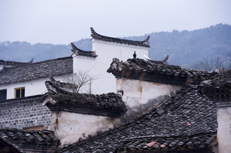 architectural building: Roof of ancient architectural building