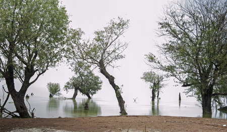 wetland conservation: Chaohu lake, Hefei lake, the rise of Stock Photo