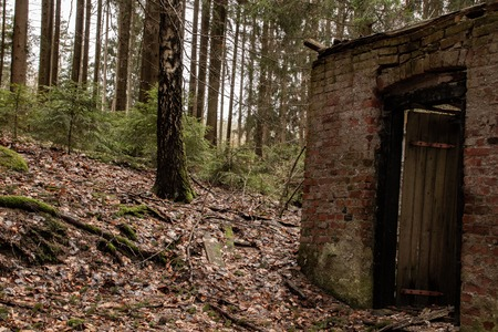 Old ruin of a small house in the forest Imagens