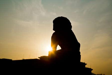 back lighting: Lion sculpture with back lighting