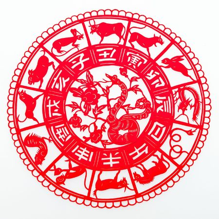 snake bite: snake,The paper cutting. The Chinese Zodiac. Stock Photo