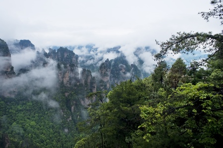 world natural heritage:  Natural Scenery of Zhangjiajie A World Natural Heritage in South China, Zhangjiajie is consisted of more than 3,000 quartz sandstone pillars, and many Karst caves