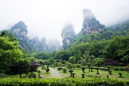 quartzite: Natural Scenery of Zhangjiajie in South China, Zhangjiajie