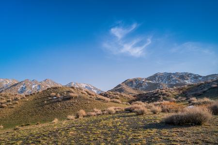 barren hill