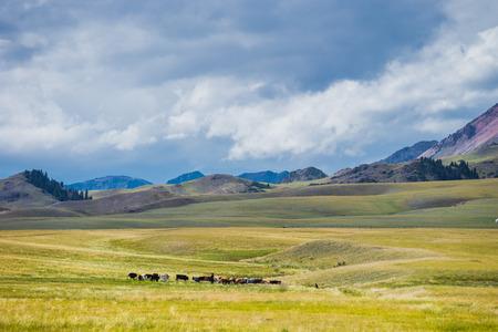 Xinjiang scenery Stock Photo