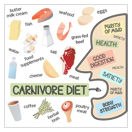 Vector image illustration of carnivore diet products and man silhouette with inscriptions about his well-being