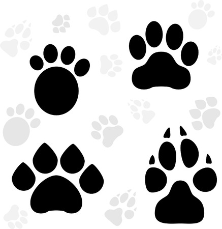 cat paw: Cool Paws Print Animal