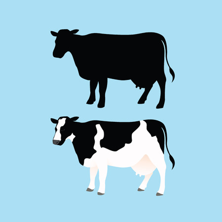 young cow: Cow Silhouettes and Color Cow Illustration