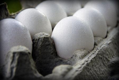 Fresh Eggs in a Cardboard Carton Banco de Imagens