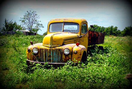 Old Ford truck abandoned in among the weeds Editorial