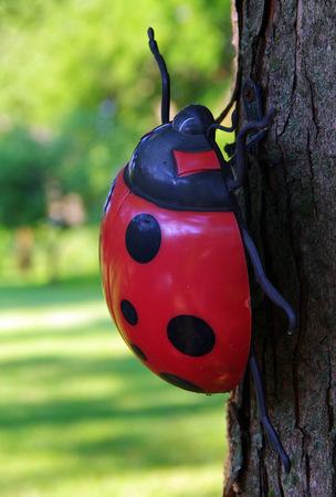 Ladybug Decoration on a Tree