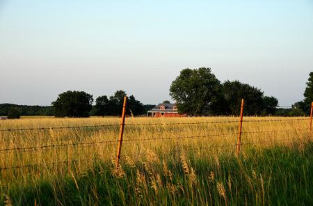 Hayfield in Kansas