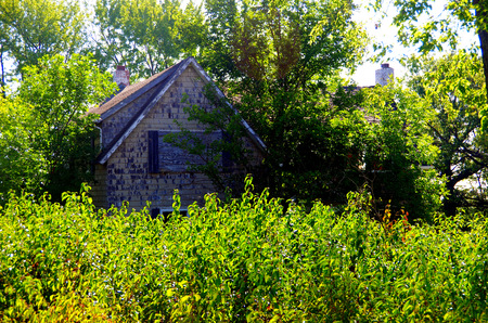 Forgotten old Farmhouse in the weeds